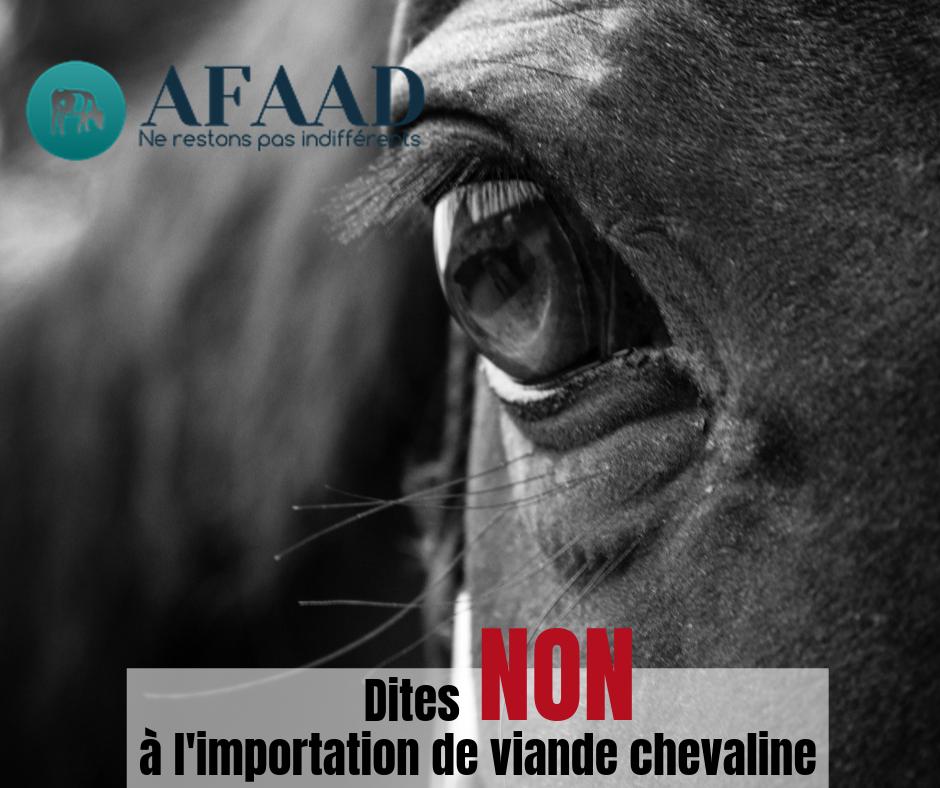 Importation viande chevaline en Europe
