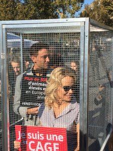 ICE : Pamela Anderson se mobilise contre les élévages en cages